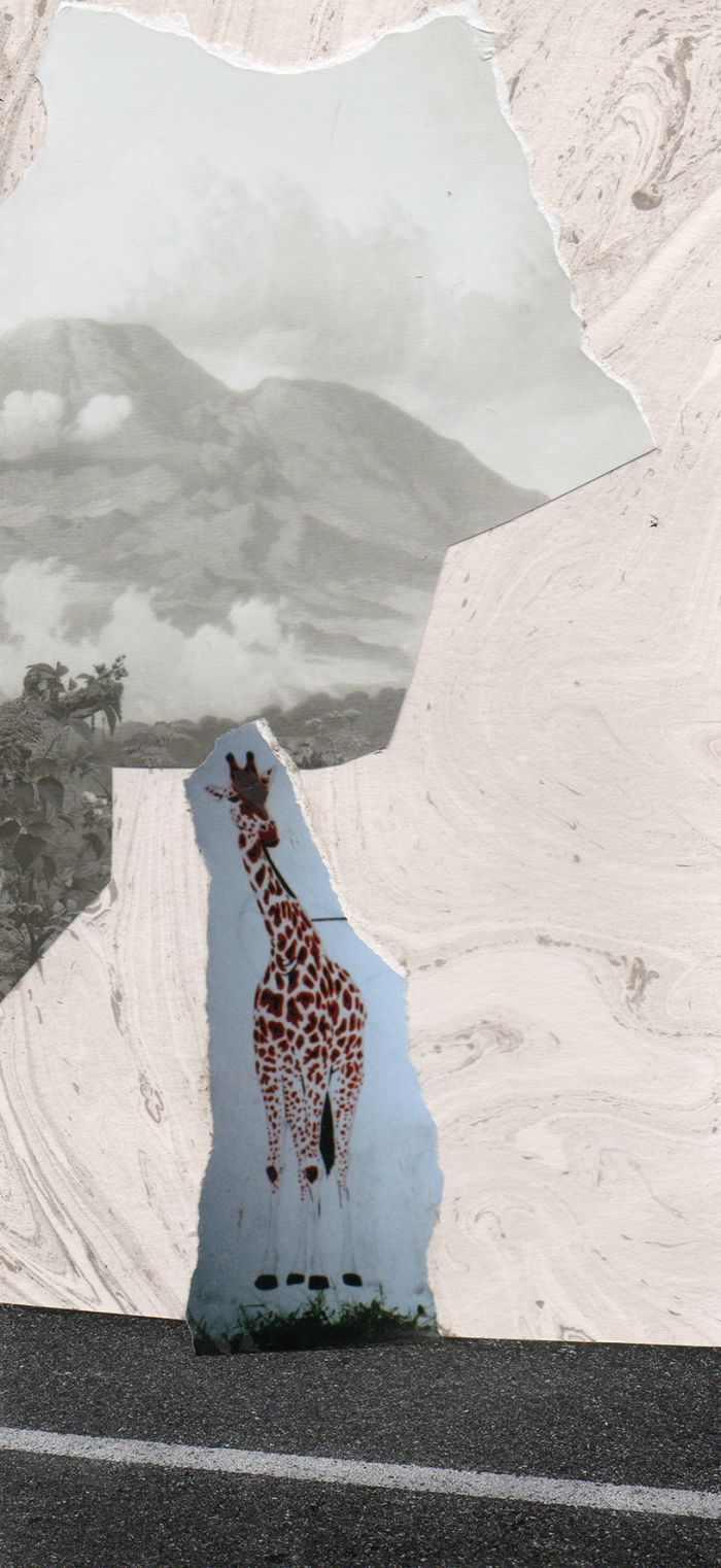 compo-la-girafe-10x21-8a582c07f94c184794a16b26c4c20870