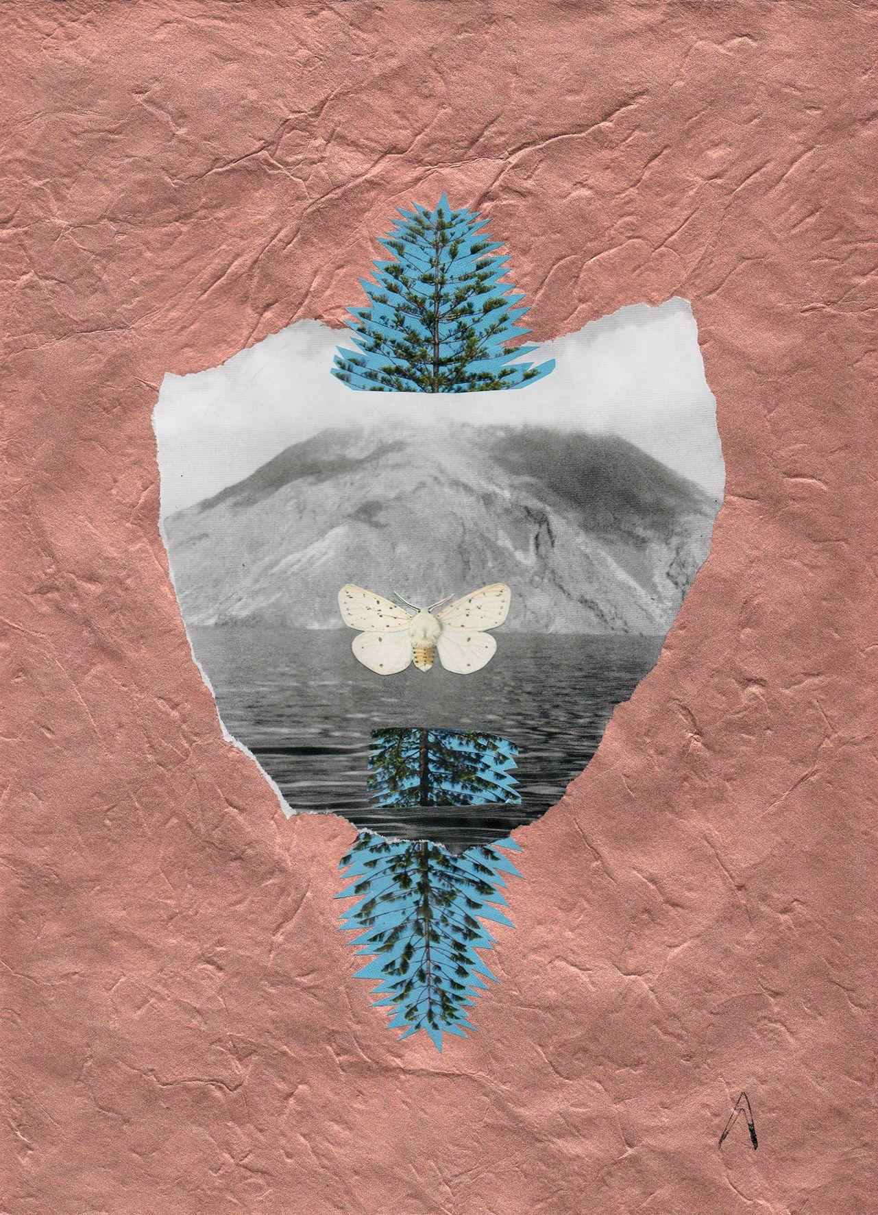 compo-le-papillon-letang-et-levolcan24x30-2017-d4549d0144583874db042d4f074a96c9