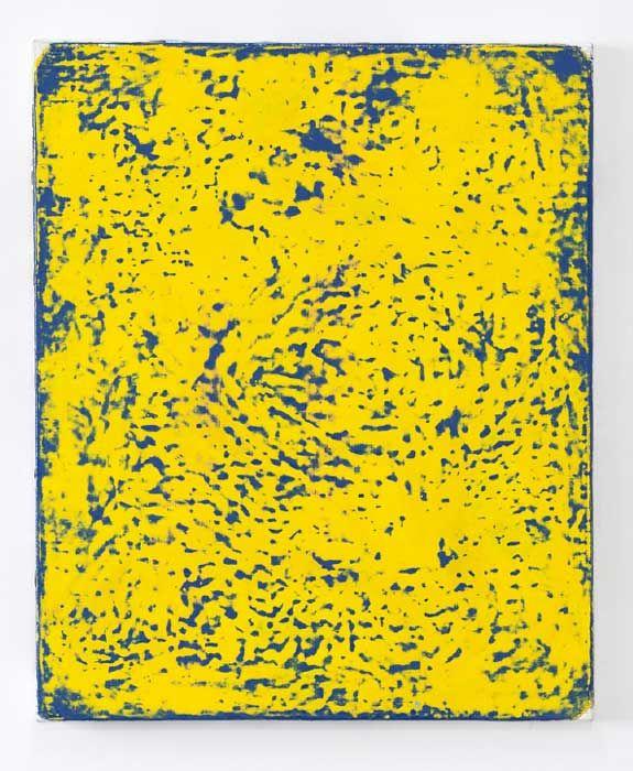 e.cheneau-128-bleu-jaune-46-x-38-2016-2017-b2d5336153076fb976c80205d2fec301