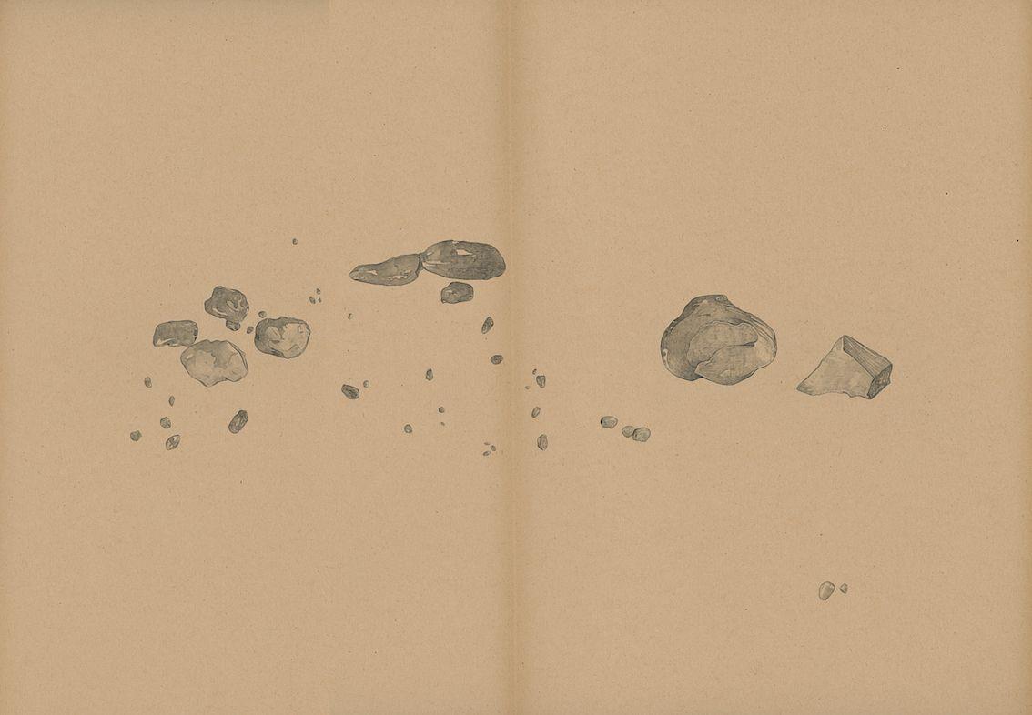 mdv_mantegna_durer_crayon_gris_sang_et_pigments_sur_papier_31x42_2016-9d87879e7d200ab4607deea7f669239a