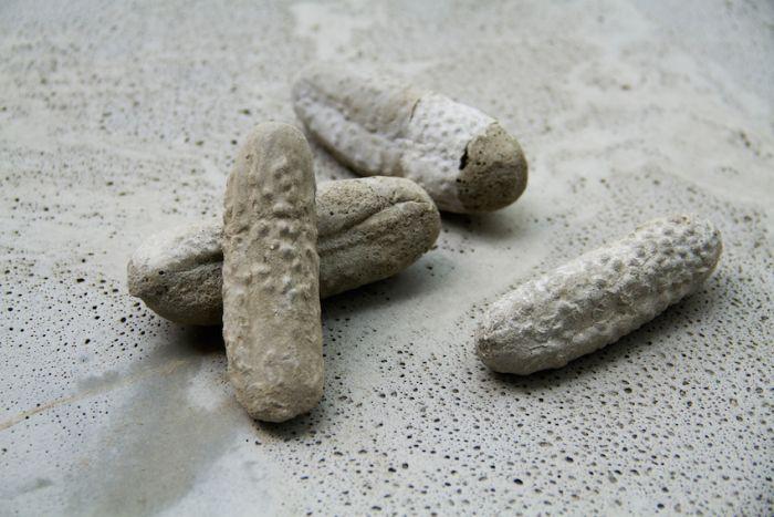 alicia-zaton-ogurki-2014-serie-de-moulages-de-cornichons-en-beton-tirage-unique-dimensions-variables-entre-12-et-4-cm-da17cfa7fc2cd338b16a10cc2f5b1854