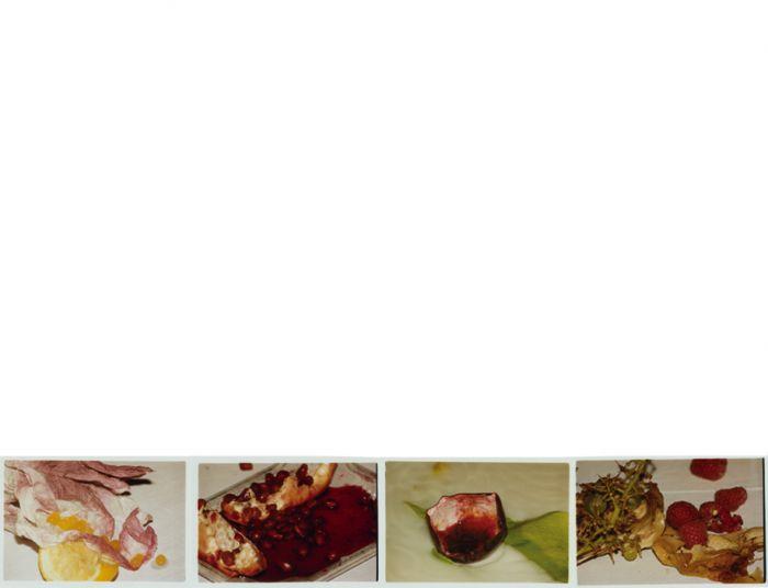 les-fruits-de-nos-entrailles_documentationcollaborationkensortais_quadriptyque_05ex-ae157848e4f8d6a08713acc50a2ccbf2
