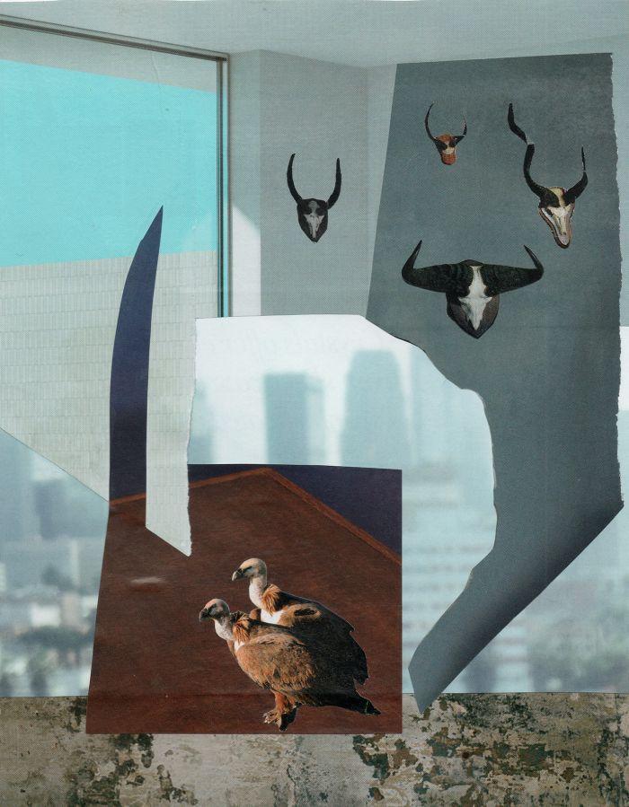 les-maitr-sil-les-vautours17.3x22-ab1d9054f923234c388dfbc8caef74a1