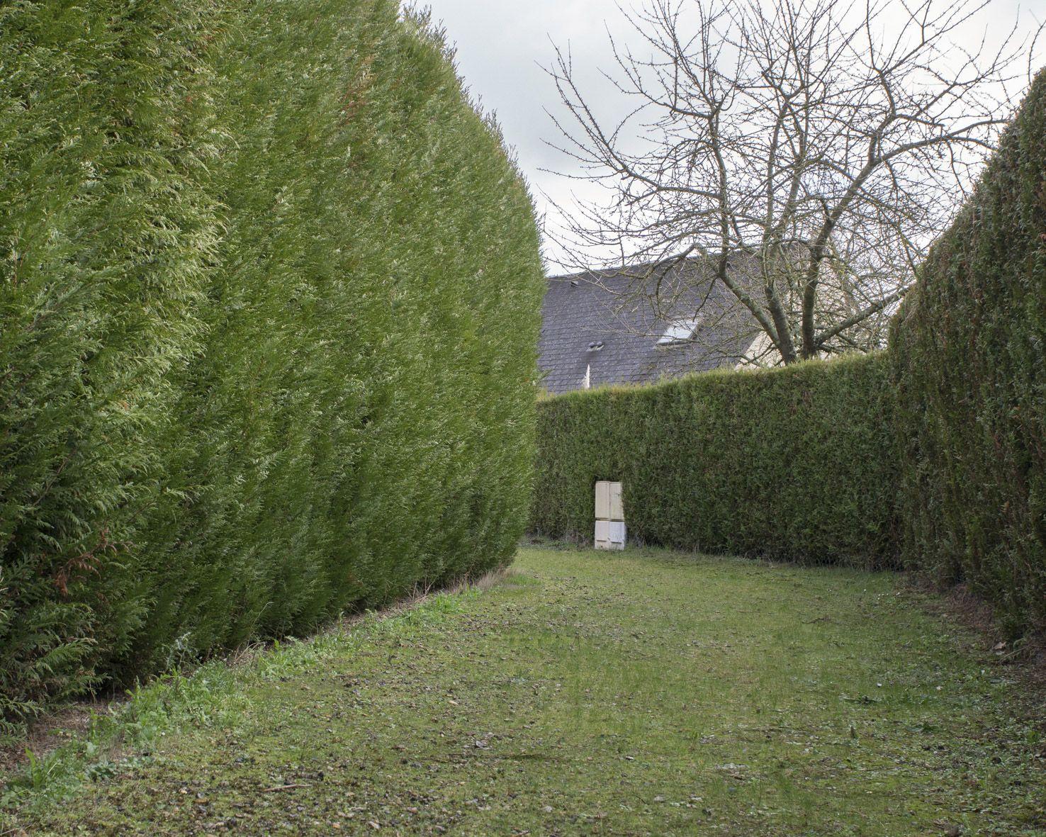 m.dearing-la-09-un-passage-entre-des-pavillons-5c46962800e9b522de9e9683137a7ed8