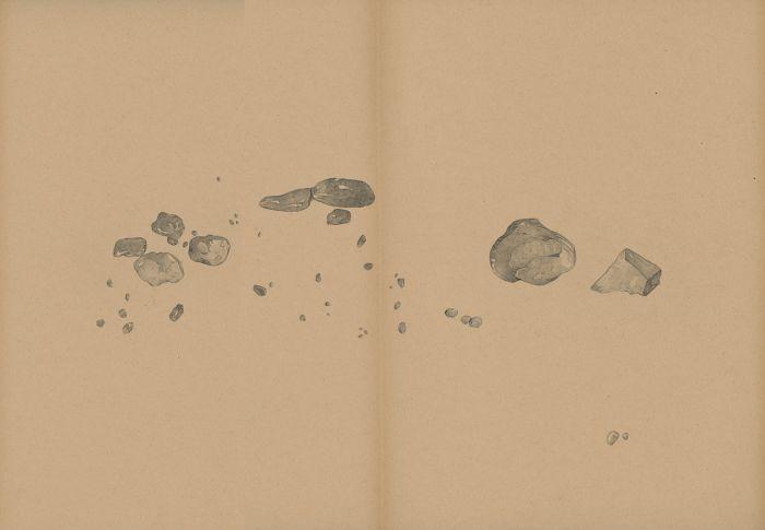 mdv_mantegna_durer_crayon_gris_sang_et_pigments_sur_papier_31x42_2016-e07783d134bf86bacc44b0623fde3309